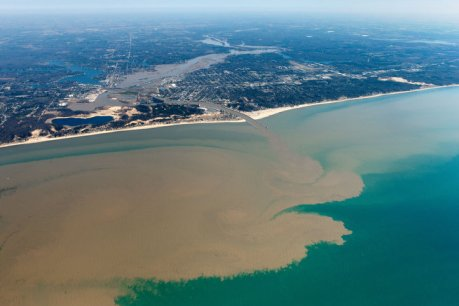 Plume of Grand River Flows into Lake Michigan